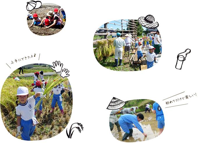 農作業イベント写真02
